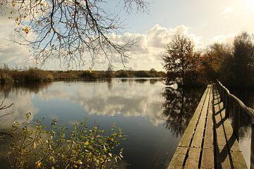 Blick durch das Naturschutzgebiet De Deelen von Pim van der Horst