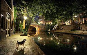 Oude gracht in Utrecht van Irene Kuizenga