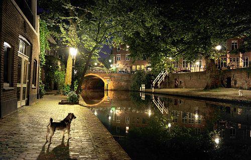 Oude gracht in Utrecht von Irene Kuizenga