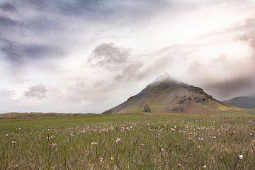 Landschap von Riana Kooij