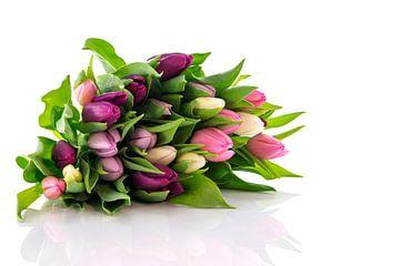 bos gekleurde tulpen von Compuinfoto .