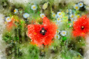 Rote Klatschmohn - Blüten von Claudia Evans