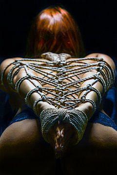 Dragonfly Knot von Rod Meier