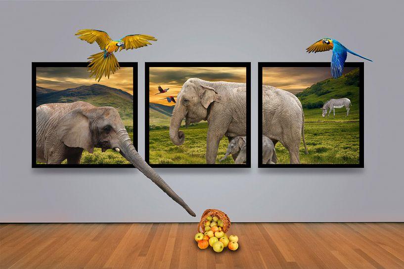 Africa Gallery van Ursula Di Chito