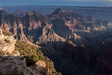 Het laatste Canyon licht van Stefan Verheij