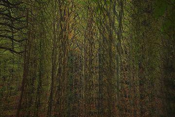 Geisterwald (Mehrfachbelichtung) von Anne Ponsen