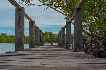 Houten dek door de Jacuípe-rivier in Bahia Brazilië van Castro Sanderson