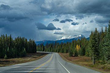 Op weg naar Banff National Park van Samantha van Leeuwen