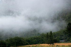 Mistige bergen in Noorwegen