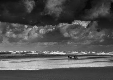 Am Strand von Johanna Blankenstein