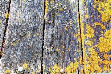 Landelijke Rustieke Houten Planken van Hendrik-Jan Kornelis