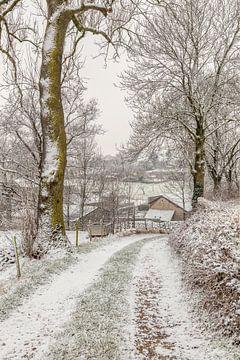 Winter 2017 in Bosschenhuizen van John Kreukniet