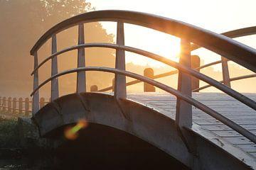 Het bruggetje in Park Sonsbeek in Arnhem bedekt met rijp tijdens zonsopkomst van Maarten Pietersma