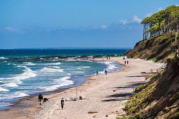 Beach on the Baltic Sea coast in Nienhagen, Germany van