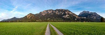 Panorama Tegelberg van Uwe Ulrich Grün