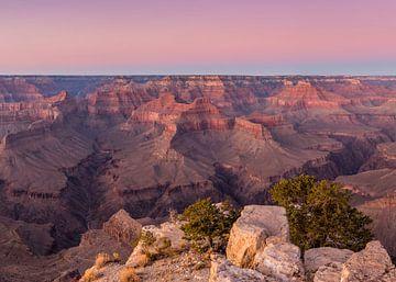Canyon glow van Gunther Cleemput