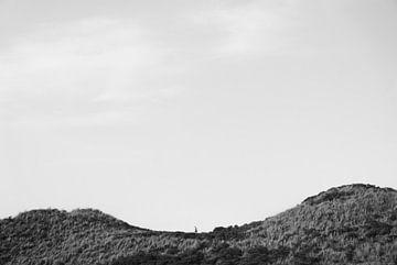 Zeeland - Läufer von Maurice Weststrate