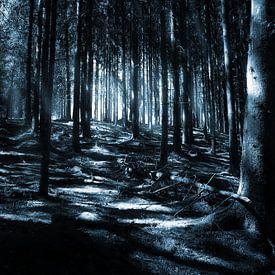 Donker bos van Jan Brons