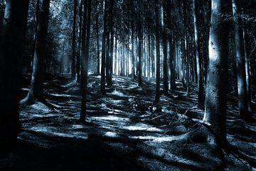 Dunkler Wald von Jan Brons