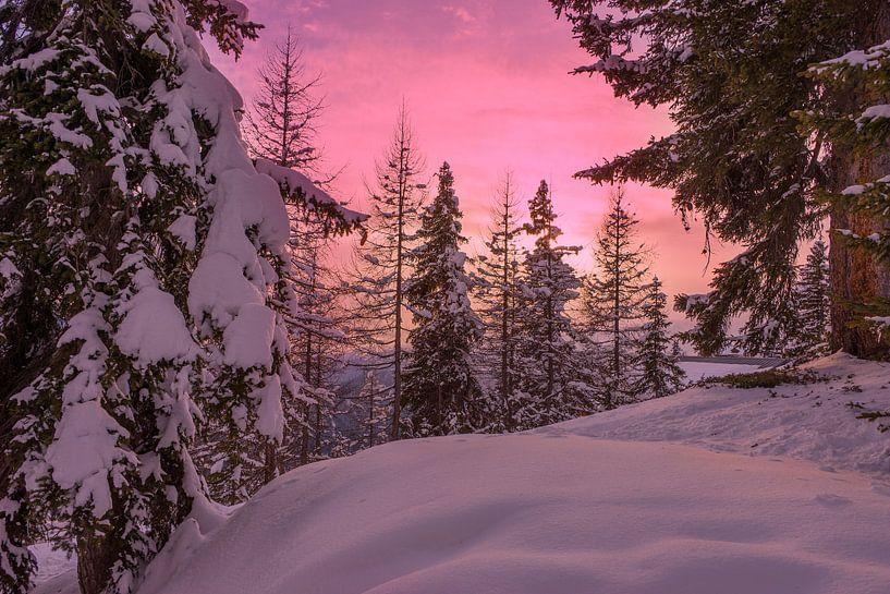Zonsondergang in een bos in de sneeuw in Lapland van iPics Photography