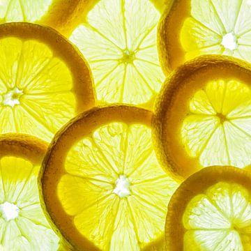 Collage van citroen schijfjes met een witte achtergrond. van Carola Schellekens