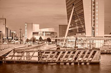 Rotterdam Kop van Zuid - monochrome