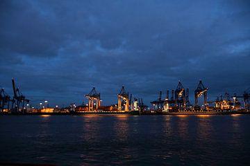 Hamburgse haven bij nacht van Borg Enders