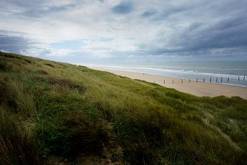 Zeereep bij Noordvoort (Langevelderslag) van Jan van de Laar