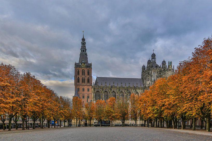 Sint-Janskathedraal en de Parade in 's-Hertogenbosch (herfstkleuren) van Fotografie Jeronimo