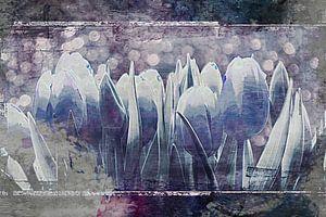 blauwe tulpen van Yvonne Blokland