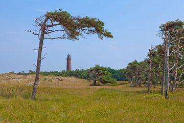 Leuchtturm Darßer Ort bei Prerow von t.ART