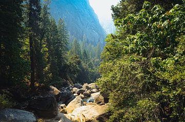 Parc national de Yosemite, Amérique sur Daphne Groeneveld