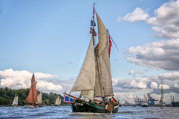 Les bateaux traditionnels sur l'Elbe sur Sabine Wagner