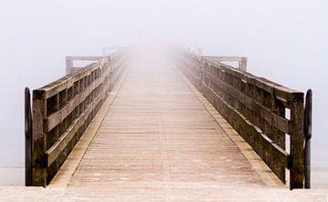 Möwenort Seebrücke von Holger Felix