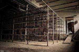 Verlassene Kristallfabrik von Michel Klanke