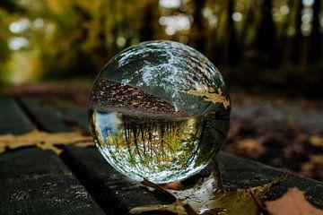 Herbst durch einen Glaskolben von MaSlieFotografie