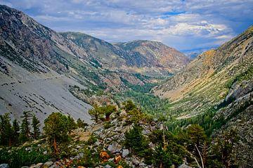 Tioga Pass vallei van Arjen van de Belt