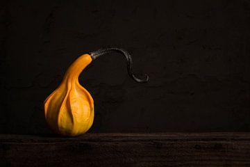 Stilleven met oranje pompoen van Elles Rijsdijk