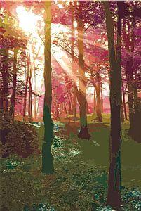 Godddelijk licht van Ilse Schoneveld