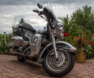 Harley-Davidson von José Verstegen