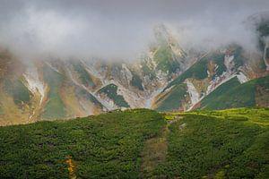 De Japanse alpen