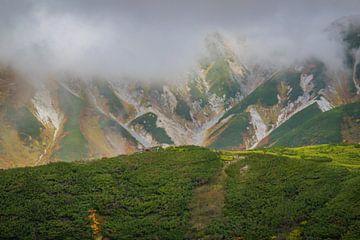 De Japanse alpen von Ineke Huizing