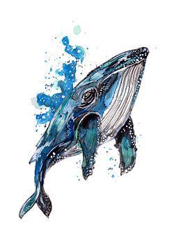 Blauer Buckelwal von ZeichenbloQ