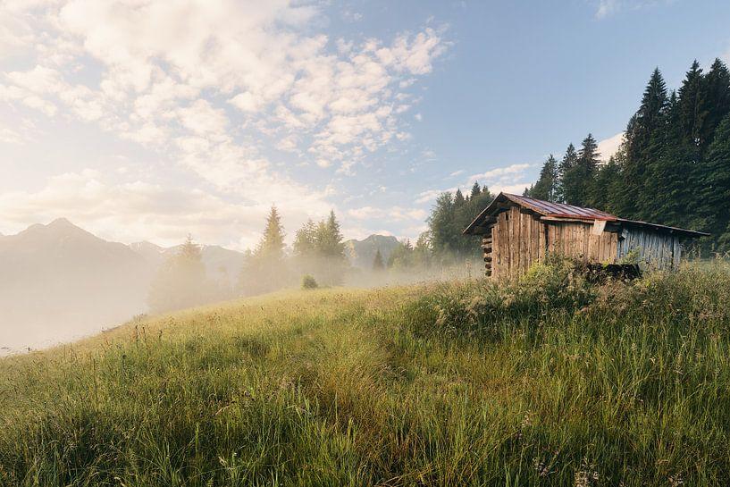 Sonnenaufgang auf der Bergwiese von Max Schiefele