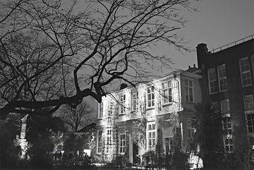 Hortus Botanicus Amsterdam von Marianna Pobedimova