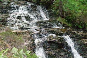 Plodda Falls van Babetts Bildergalerie