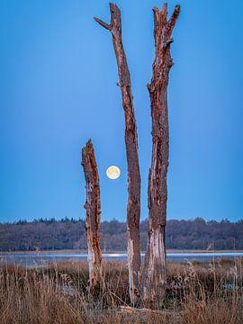 Volle maan in de Mepperhooilanden van Lynxs Photography