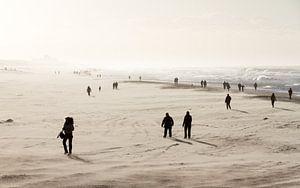 Winterse strandwandeling