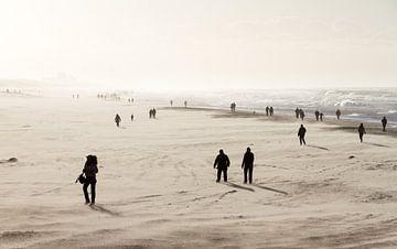 Winterse strandwandeling von Dennis van de Water