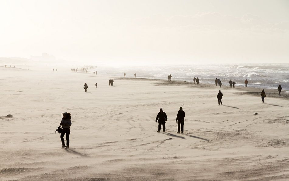 Winterse strandwandeling van Dennis van de Water